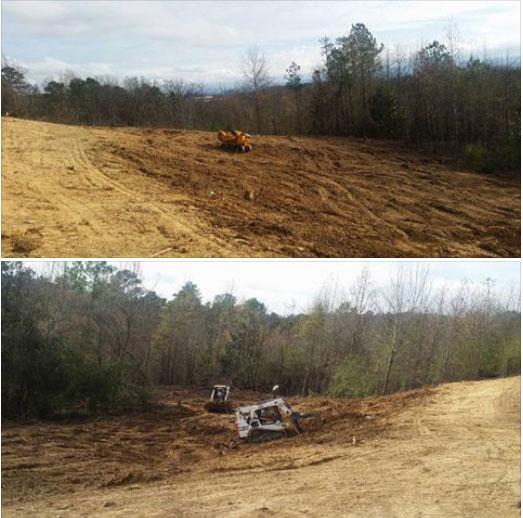 Land-Clearning-KM-Pro-Tree